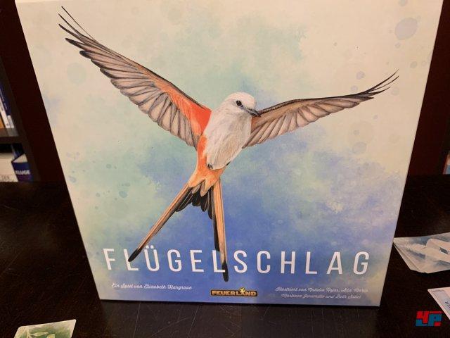 Screenshot - Flügelschlag (Spielkultur) 92588350