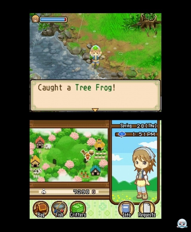 Screenshot - Harvest Moon: The Tale of Two Towns (NDS) 2232108