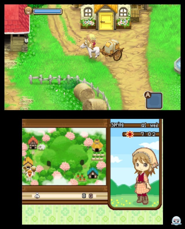 Screenshot - Harvest Moon: The Tale of Two Towns (3DS) 2232134