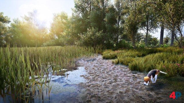 Screenshot - Hunting Simulator 2 (PC)