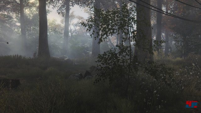 Screenshot - The Vanishing of Ethan Carter (PlayStation4) 92510183