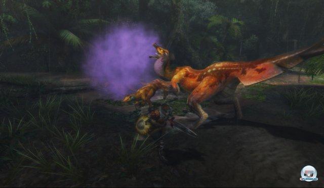 Screenshot - Monster Hunter 3 Ultimate (Wii_U) 92443687
