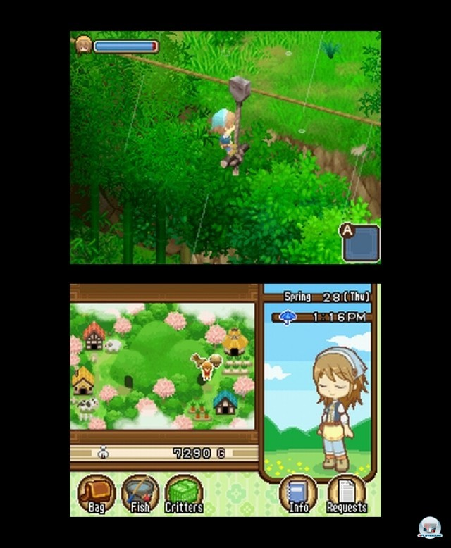 Screenshot - Harvest Moon: The Tale of Two Towns (NDS) 2232097