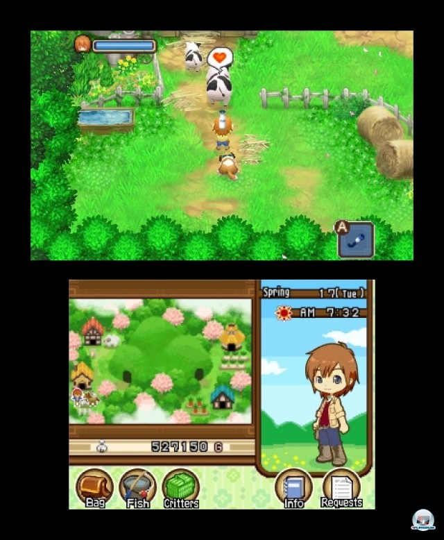 Screenshot - Harvest Moon: The Tale of Two Towns (3DS) 2232217