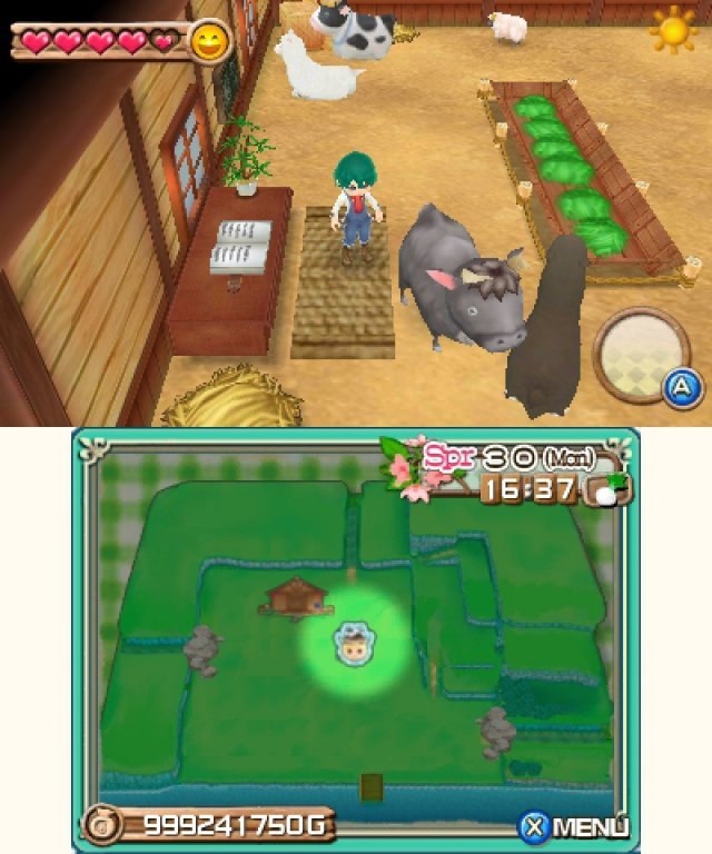 Screenshot - Harvest Moon 3D: A New Beginning (3DS)