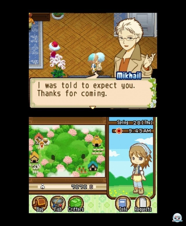 Screenshot - Harvest Moon: The Tale of Two Towns (NDS) 2232037