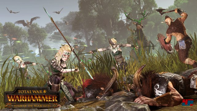 Screenshot - Total War: Warhammer (Linux) 92536722