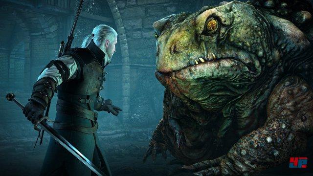 Screenshot - The Witcher 3: Wild Hunt (PC) 92512995