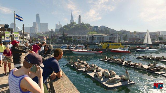 Es gibt in San Francisco und Umgebung immer wieder beeindruckende Panoramen sowie überraschende Reaktionen der Zivilbevölkerung.
