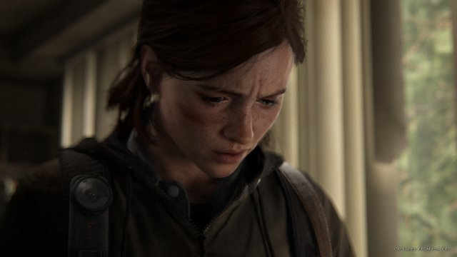 Screenshot - The Last Of Us Part 2 (PS4) 92615581
