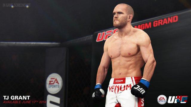 Screenshot - EA Sports UFC (PlayStation4) 92482797