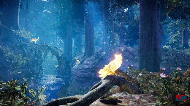 Screenshot - Far Cry Primal (PlayStation4) 92520629