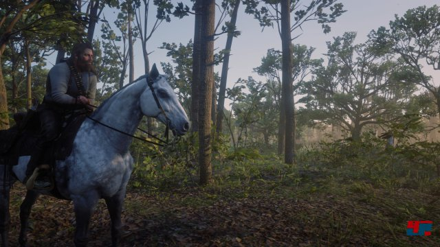 Screenshot - Red Dead Redemption 2 (PS4) 92576239