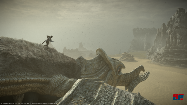 Screenshot - Shadow of the Colossus (PS4) 92554962