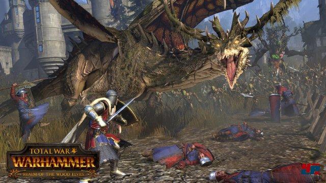 Screenshot - Total War: Warhammer (Linux) 92536720