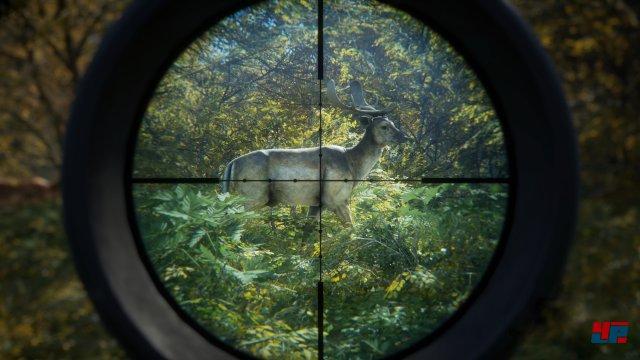 Screenshot - theHunter: Call of the Wild (PC) 92537058