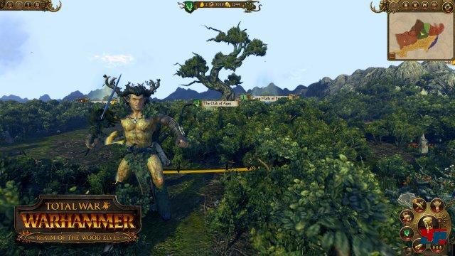 Screenshot - Total War: Warhammer (Linux) 92536716