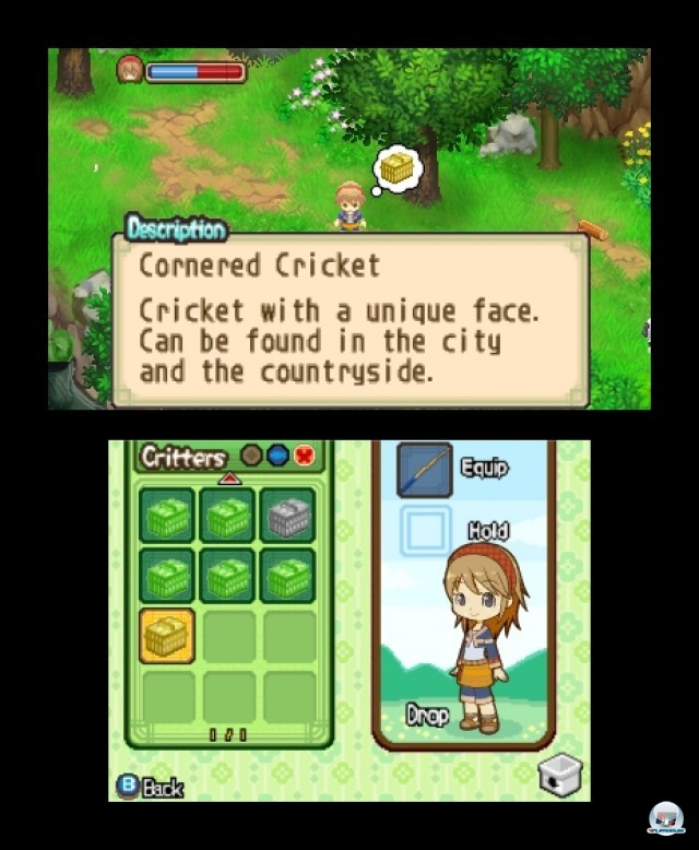 Screenshot - Harvest Moon: The Tale of Two Towns (3DS) 2232179