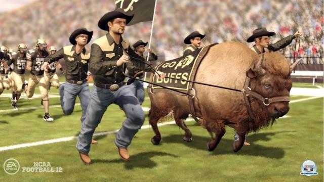 Screenshot - NCAA Football 12 (360) 2217883