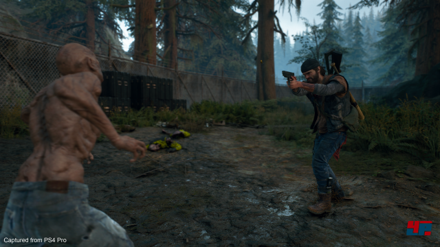 Screenshot - Days Gone (PlayStation4Pro) 92585147