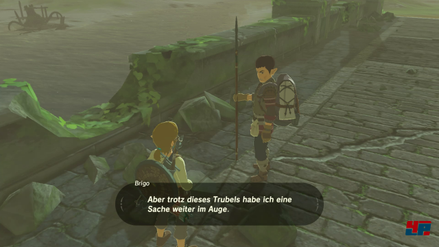 Screenshot - The Legend of Zelda: Breath of the Wild (Switch) 92541317