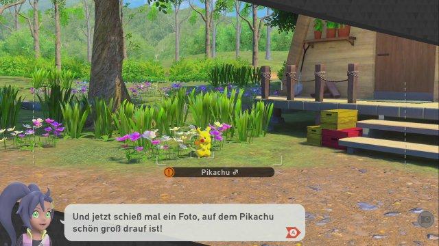 Screenshot - New Pokémon Snap (Switch) 92640650