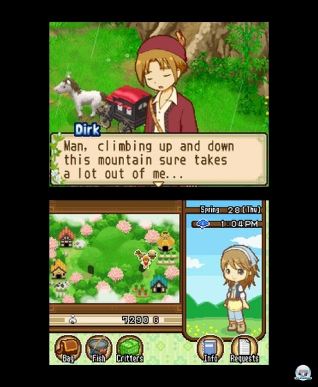 Screenshot - Harvest Moon: The Tale of Two Towns (NDS) 2232093
