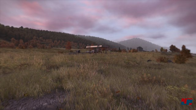 Screenshot - DayZ (PC) 92478989