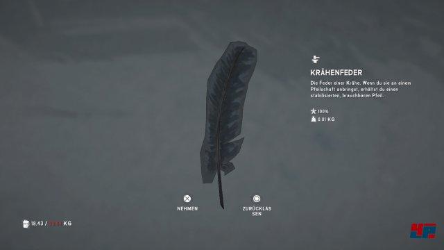 Screenshot - The Long Dark (PS4) 92550784