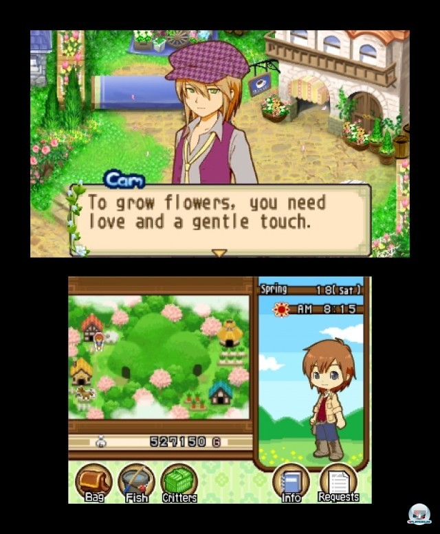 Screenshot - Harvest Moon: The Tale of Two Towns (3DS) 2232237