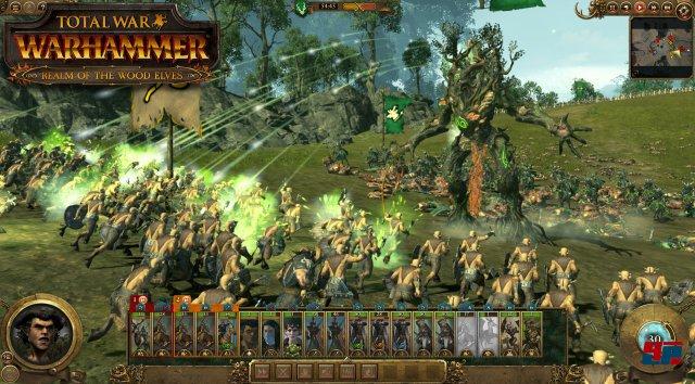 Screenshot - Total War: Warhammer (Linux) 92536719