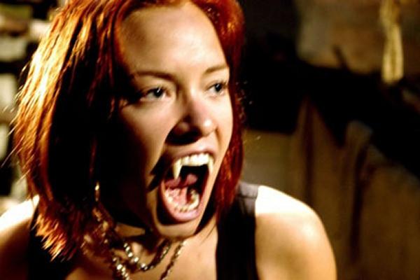 BloodRayne (2006)<br><br>Dr. Uwe Boll ist ein Phänomen: Kaum ein anderer Regisseur seit Ed Wood verfolgt derart konsequent eine Linie des filmischen Versagens. Und dennoch schafft er es wieder und wieder, mittelgroße bis große Namen in seine Filme zu bekommen, von denen man eigentlich nicht denkt, dass sie es nötig haben, ihre Seele dem Teufel zu überschreiben. Das beste Beispiel für diese Absurdität ist BloodRayne: Ben Kingsley, Michael Madsen, Billy Zane, Udo Kier, Kristanna Loken, Michelle Rodriguez und Meat Loaf verirrten sich aus irgendeinem Grund in die Verfilmung eines Spiels, das an sich schon weniger Story als Tetris bietet. Verdiente sechs Nominierungen für die Goldene Himbeere, ein verdienter Dauergast in den Listen der schlechtesten Filme aller Zeiten. 1723072