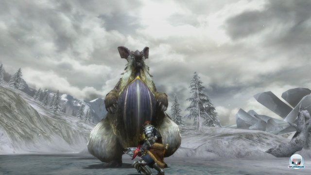 Screenshot - Monster Hunter 3 Ultimate (Wii_U) 92433422