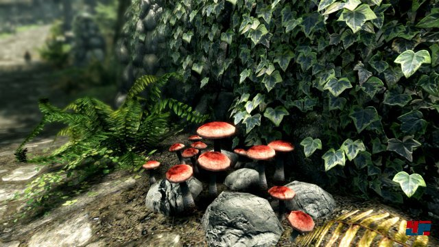 Screenshot - The Elder Scrolls 5: Skyrim (PC) 92527428