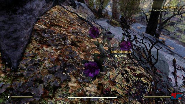 Screenshot - Fallout 76 (One) 92577652