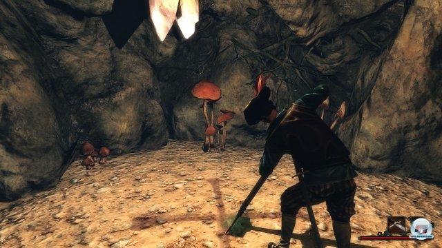 Screenshot - Risen 2: Dark Waters (PC) 2346037