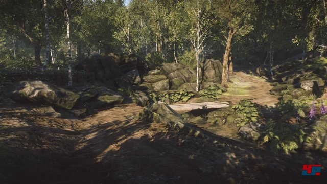 Screenshot - Everybody's Gone to the Rapture (PlayStation4) 92511556