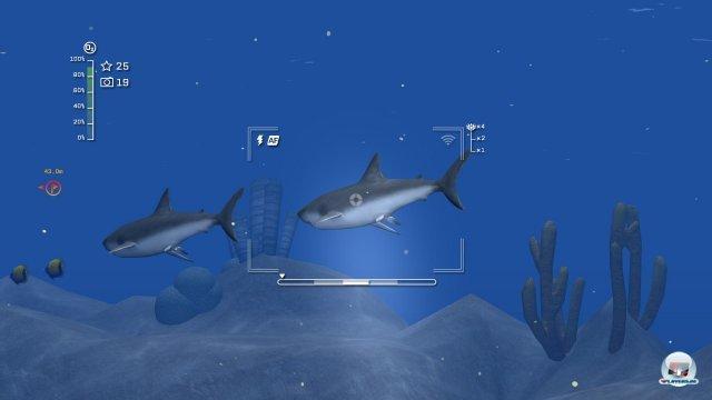 Screenshot - Reef Shot - Die Tauch-Expedition (PC) 92458684