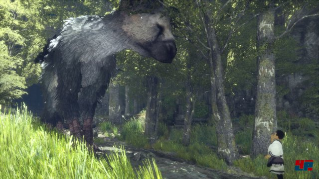 Screenshot - The Last Guardian (PS4) 92537336