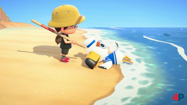 Screenshot - Animal Crossing: New Horizons (Switch) 92608335