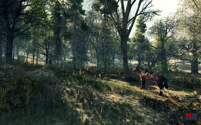 Screenshot - Life is Feudal: MMO (PC)