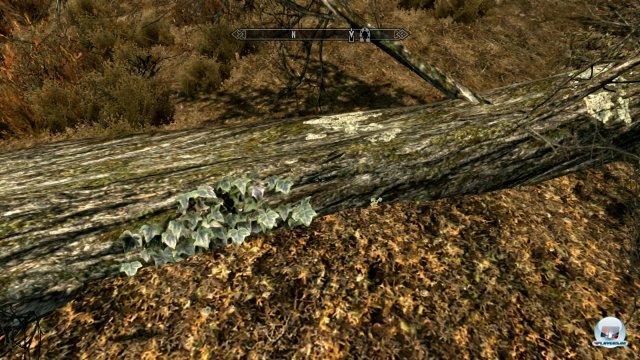 Screenshot - The Elder Scrolls V: Skyrim (PlayStation3) 2286112