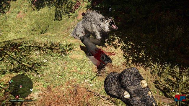 Screenshot - Far Cry Primal (PlayStation4) 92520635