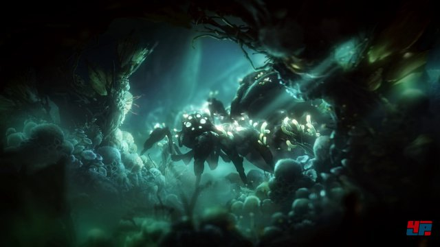 Screenshot - Ori and the Will of the Wisps (PC) 92547718