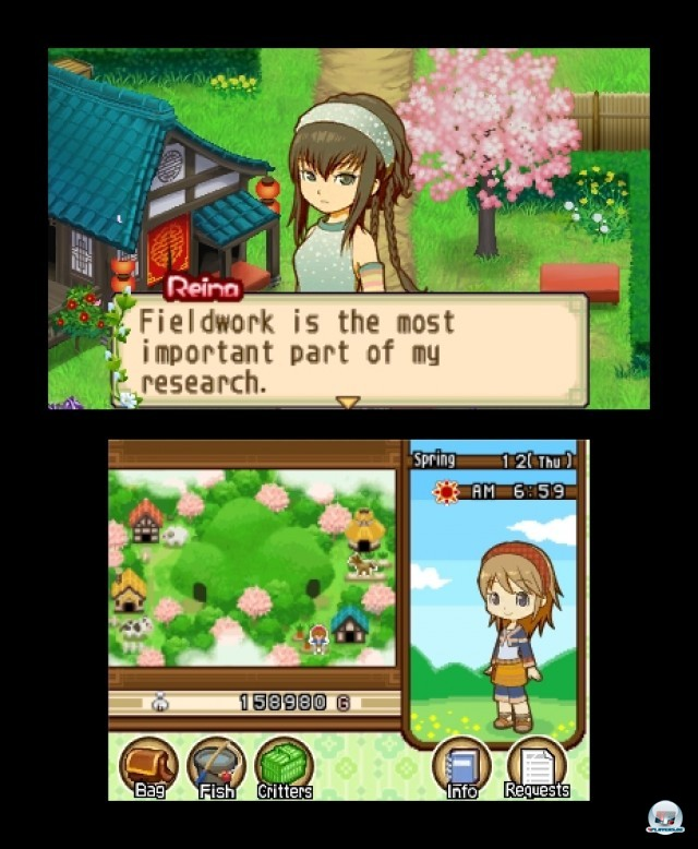 Screenshot - Harvest Moon: The Tale of Two Towns (3DS) 2232143