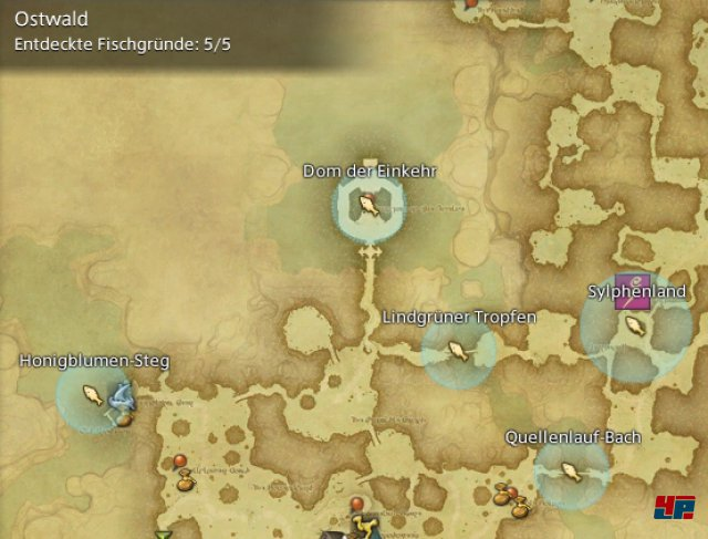 Final Fantasy XIV Online: A Realm Reborn - Fischgründe: Finsterwald, Ostwald