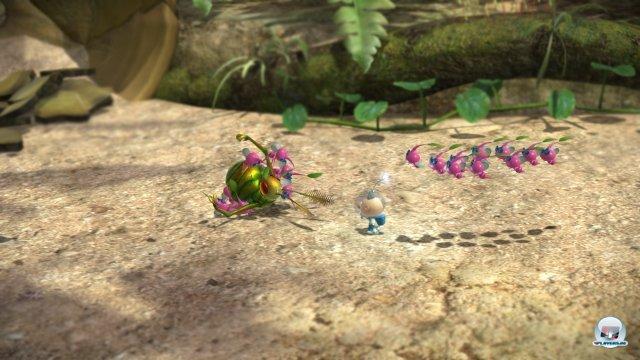 Screenshot - Pikmin 3 (Wii_U) 92459442