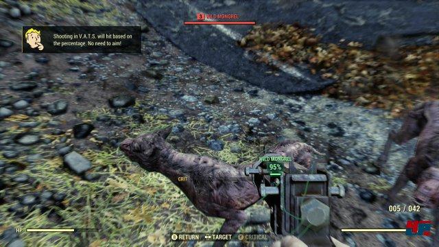 Screenshot - Fallout 76 (One) 92577654
