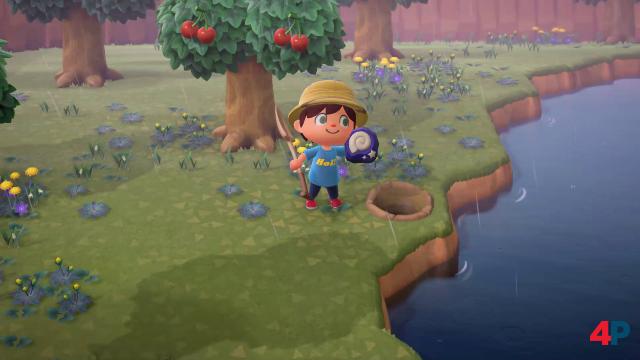 Screenshot - Animal Crossing: New Horizons (Switch) 92608320
