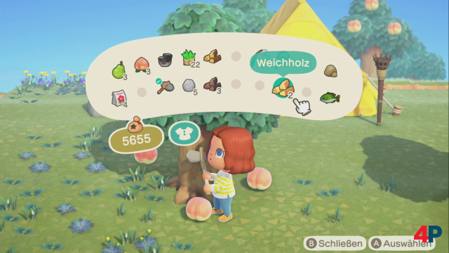 Screenshot - Animal Crossing: New Horizons (Switch) 92607669